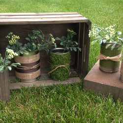 Tin Can Project: Make Your Own Flower Pot